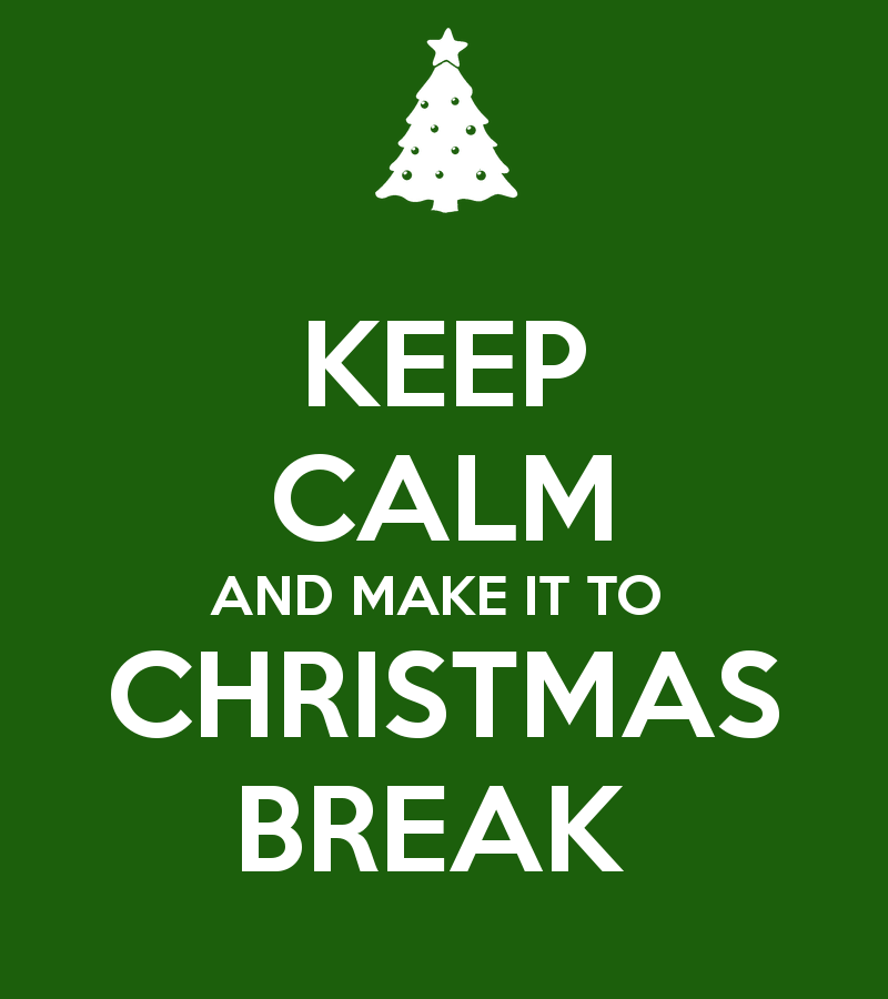 Image result for Christmas break""