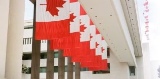 Canadian Schools Are at Risk for Data Breaches. How Can They Protect Themselves?