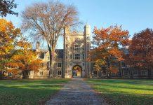 Best Colleges In Michigan