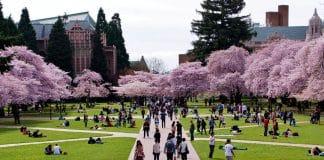 Best Colleges In Washington 2021