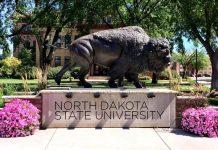 Best Colleges in North Dakota 2021